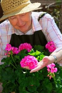 Senior woman gardening